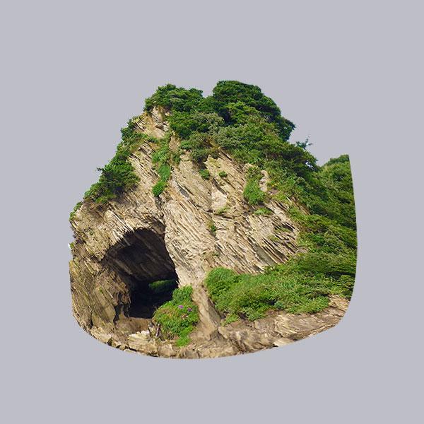 Cave Land Rocks Forest Trees Cliff Islands of The Bahamas Caribbean Vector Graphic Image Branding The Bahamian Studio Graphic Design Flyers Logos Printing Marketing Nassau Bahamas